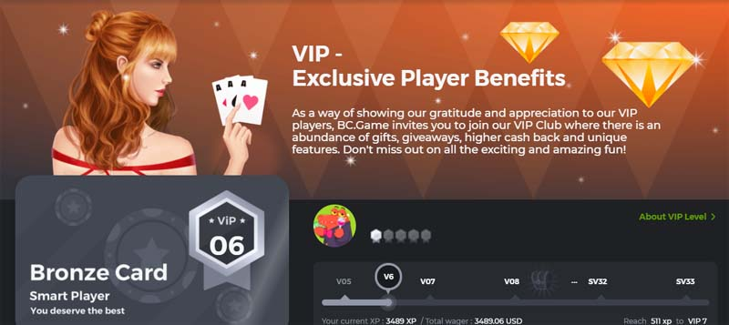 bc game vip player